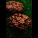COOKIE TOUT CHOCOLAT/PEPITES CHOCO BIO-17G